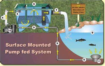 basic filter types aquaponics ponds backyard