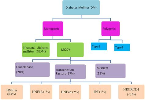 frontiers genetic testing  maturity onset diabetes