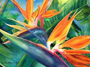 Tropical flower artwork - BBCpersian7 collections