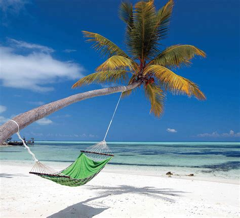 Maldives Hammock-wall Mural-9'wide By 8.0'high