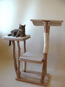 Arbre à Chat Fait Maison : arbre a chat bois flotte ~ Melissatoandfro.com Idées de Décoration