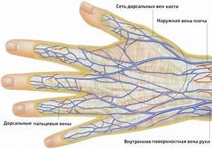 Что делать если на пальце руки грибок