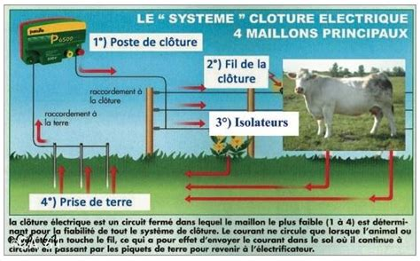 chambre d agriculture 40 en élevage allaitant aussi la clôture électrique s impose