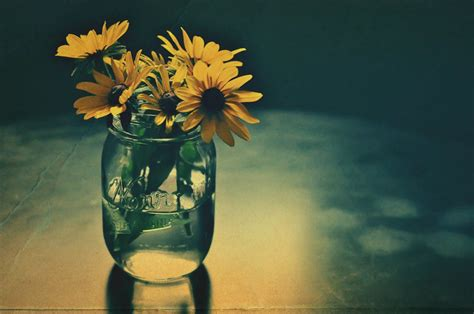35 Superb Examples Of Still Life Photography