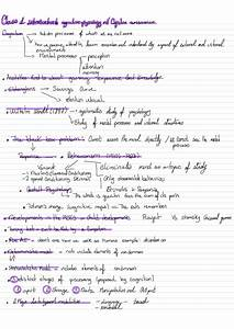 Psyc 364 Study Guide - Fall 2019  Midterm