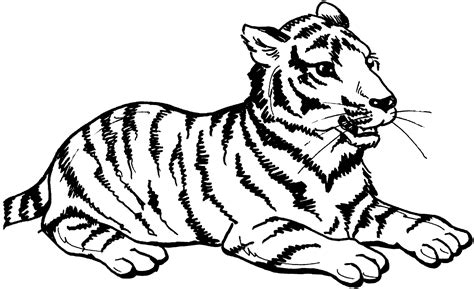 Coloring Tiger by Free Tiger Coloring Pages