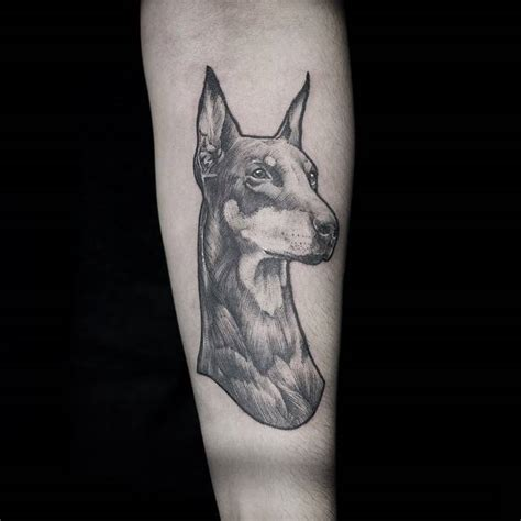 doberman tattoo    forearm