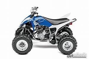 Quad Yamaha 250 : 2015 sport quad buyer 39 s guide dirt wheels magazine ~ Medecine-chirurgie-esthetiques.com Avis de Voitures