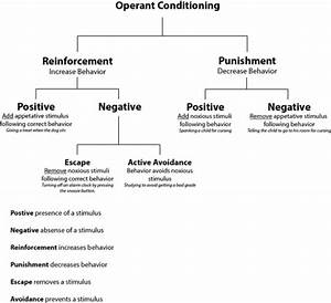 Operant Conditioning Part 2