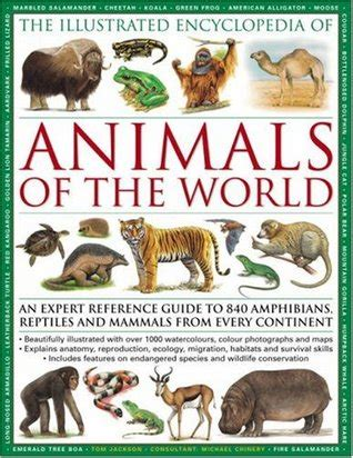 illustrated encyclopedia  animals   world  expert reference guide