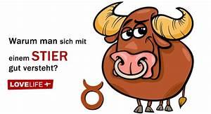 Stier Und Skorpion : warum man sich mit einem stier sternzeichen gut versteht ~ A.2002-acura-tl-radio.info Haus und Dekorationen