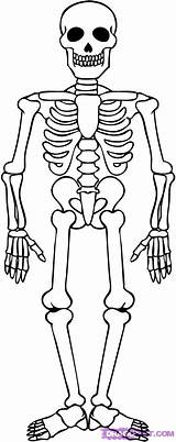 Skeleton Coloring Pages sketch template