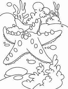 Coral Reef Animals Coloring Pages. coral reef worksheet ...