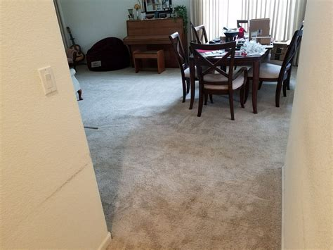 Newly Cleaned Carpets, Courtesy Of Elk Grove Carpet Cleaning Cobb Carpet Supply Viceroy Drive Dallas Tx Anti Dust Mite Cleaner How To Clean Soy Candle Wax Off Much Does It Cost 12 Stairs United Red Club Dulles Airport Saltire Carpets And Flooring Kirkintilloch Barn Bristol Opening Times Party Invitations Templates Free