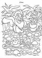 Simba Timon Spring Tub Pumbaa Coloring Lion Pages King Print Disney Hellokids Pumba sketch template