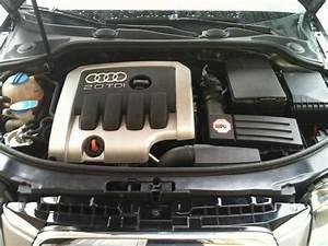 Audi A3 2l Tdi 140 : courroie de distribution audi a3 2l tdi 140 ~ Gottalentnigeria.com Avis de Voitures
