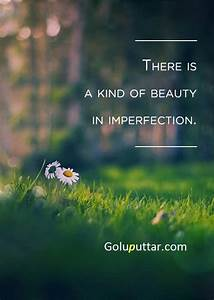 Brilliant, Beauty, Quote, Beauty, Is, Everywhere