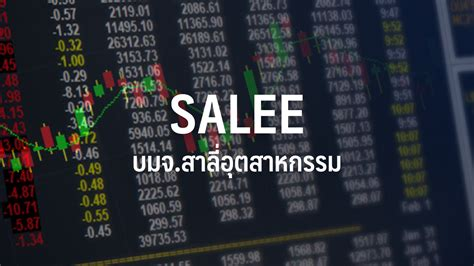 SALEE มั่นใจปีนี้พลิกกำไร-รายได้โต 10% คาดครึ่งหลังโต ...