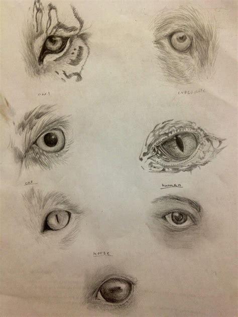 animal eyes  glenysakazhenzi  deviantart