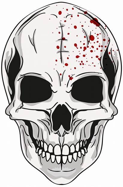 Clipart Skull Skeleton Face Transparent Halloween Clip
