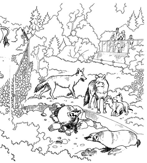coloring page zoo coloring pages