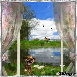 Blick Aus Dem Fenster Poster : blick aus dem fenster picture 131769072 ~ Markanthonyermac.com Haus und Dekorationen