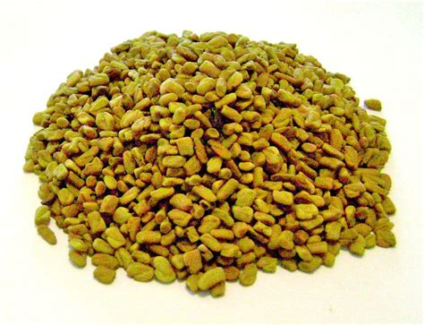 Buy Organic Fenugreek Seeds Organic Fenugreek Australia