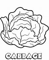 Cabbage Coloring Vegetable Printable Pages Vegetables Children Sheet Topcoloringpages Toddlers sketch template