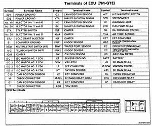 Ecu Pinout Diagram For A 1987 7mgte Ecu