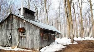 Sauna Bauen Kosten : gartensauna selber bauen gartenhaus selber bauen kosten einschlie lich gro artig haus spitze ~ Watch28wear.com Haus und Dekorationen