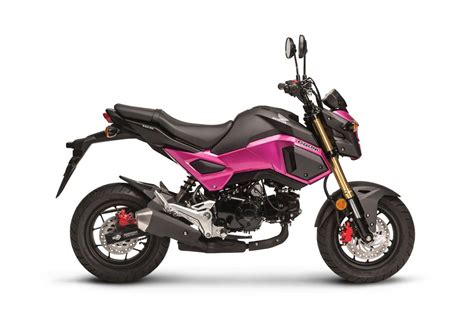 2017 Honda Grom For Sale At Teammoto New Bikes