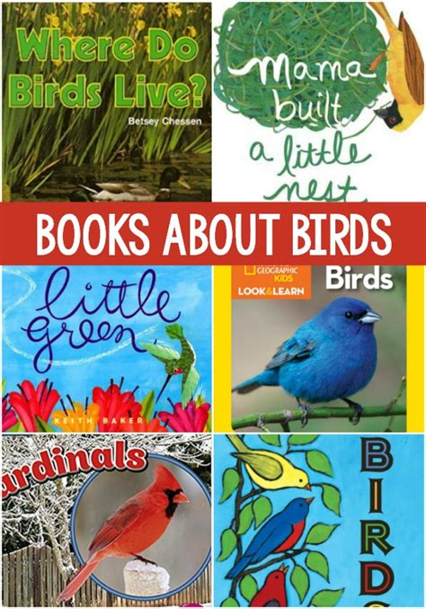 books about birds for preschoolers pre k pages 234 | Books About Birds for Preschool