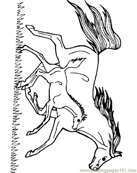 coloring pages horse coloring page  animals horse