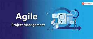Agile Project Management  A Beginner U0026 39 S Guide On Agile
