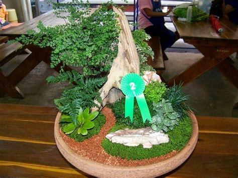 ตัวอย่างการจัดสวนถาดแบบชื้น -การแข่งขันการจดสวนถาดนักเรียน ...