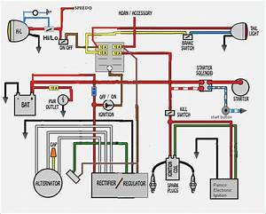 Brake Light Wiring Diagram  U2013 Moesappaloosas Com