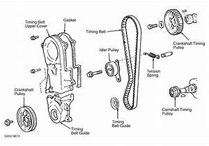 1986 Toyota Tercel Serpentine Belt Routing And Timing Belt