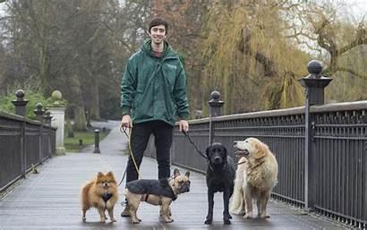 Dog Walker Walking Pets Pet Health Benefits