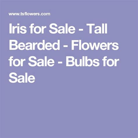 25 best ideas about iris for sale on iris