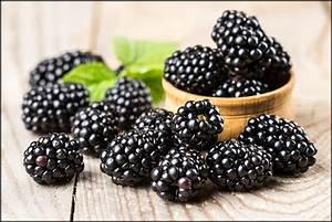 8 Amazing Health Benefits Of Blackberries