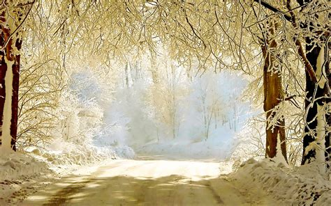 Free Winter Background by 30 Beautiful Winter Wallpapers Backgrounds Images
