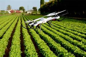 Punjab government to introduce drone technology in ...