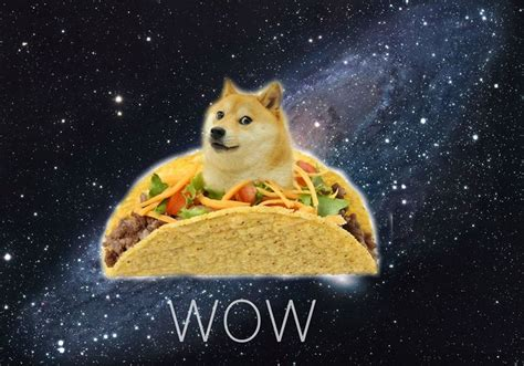 Doge Wow Meme - wow what is happening to doge wow doge is flying with taco such impressive wow so space doge