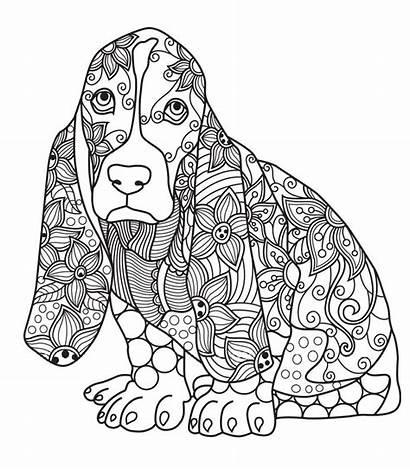Coloring Pages Adult Dog Adults Mandala Printable