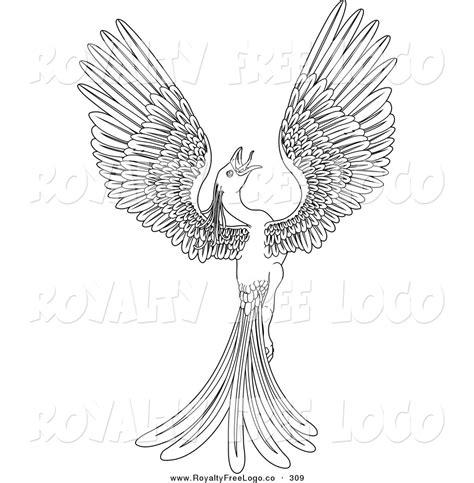 phoenix outline clipart clipground