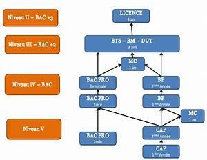 Formation Mecanique Auto En Ligne : quel parcours de formations ~ Medecine-chirurgie-esthetiques.com Avis de Voitures