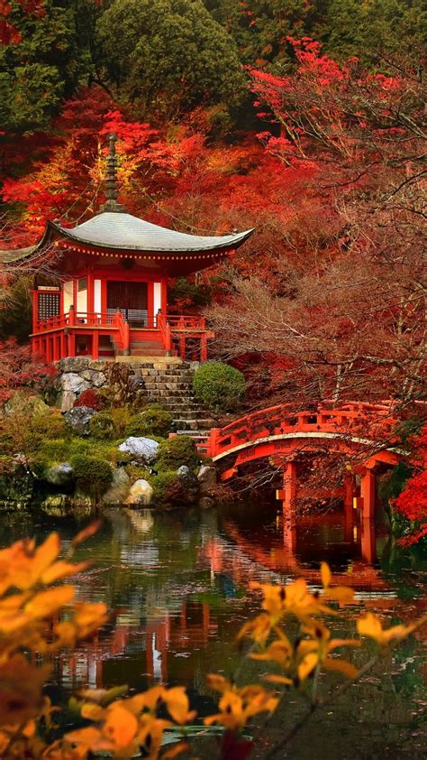 Autumn In Japan Tap To See More Beautiful Nature