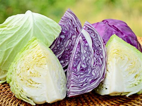Freezing Cabbage