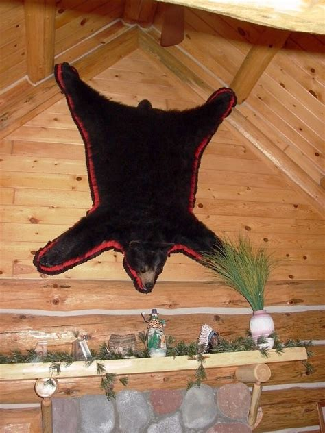 Skin Rug Taxidermy Cost by Who Needs A Rug When You Can Hang It On The Wall