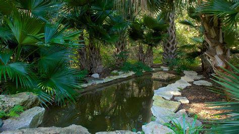 zilker botanical garden  austin texas expedia